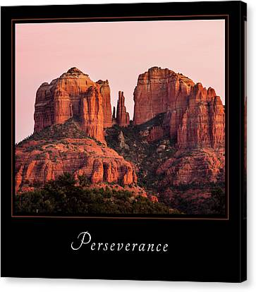 Canvas Print featuring the photograph Perserverance 3 by Mary Jo Allen
