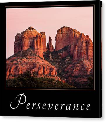 Canvas Print featuring the photograph Perseverance by Mary Jo Allen