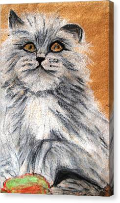 Persian Cat Canvas Print by Angela Murray