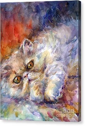 Persian Cat Painting Canvas Print by Svetlana Novikova
