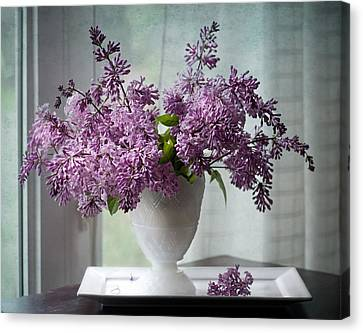 Persian Lilacs By The Window Canvas Print by Maggie Terlecki