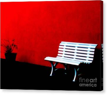Perspective In Bench White   Canvas Print by Steven  Digman
