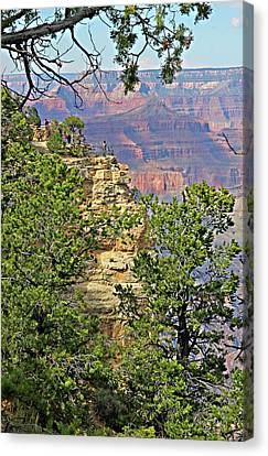 Perspective Of Grand Canyon Canvas Print by Linda Phelps