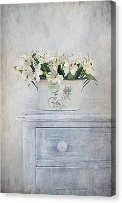 Peruvian Lilies Canvas Print