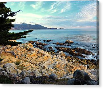 Pescadero Point Canvas Print by Connor Beekman