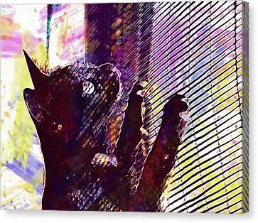 Canvas Print featuring the digital art Pet Cat Look Kitten  by PixBreak Art