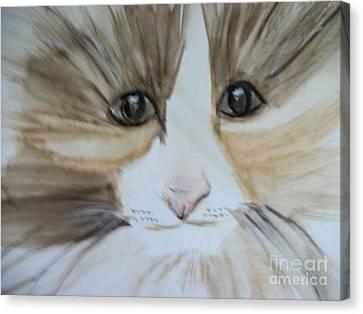 Pet Me Please Canvas Print by Roxanna Finch