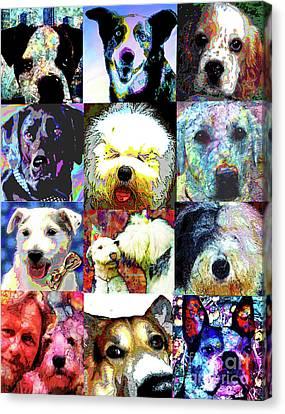 Pet Portraits Canvas Print by Alene Sirott-Cope