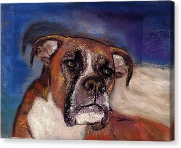 Pet Portraits Canvas Print by Darla Joy  Johnson