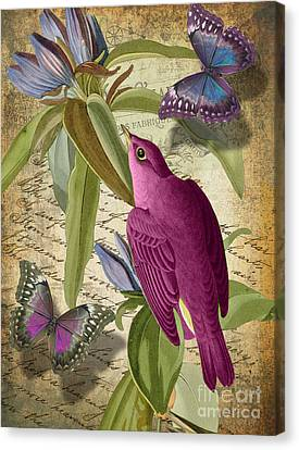 Tropical Bird Postcards Canvas Print - Petals And Wings I by Mindy Sommers