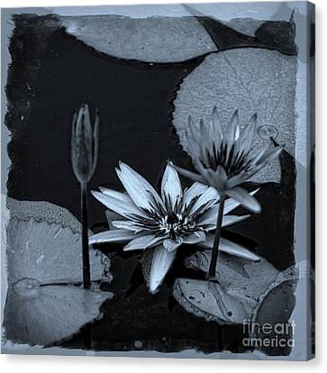Petals Floating On Water Bw Canvas Print by Ella Kaye Dickey