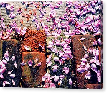 Canvas Print featuring the photograph Petals On The Bricks 2 Ae by Lyle Crump