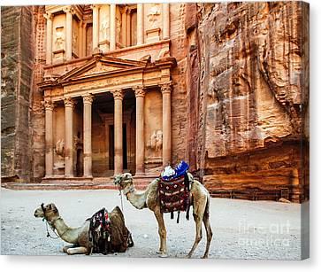 Petra Jordan Camels At The Treasury Canvas Print by Kenneth Lempert