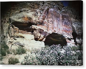 Petra, Transjordan: Cave Canvas Print by Granger