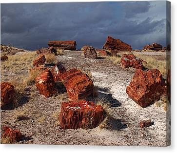 Canvas Print featuring the photograph Petrified Forest National Park by James Peterson