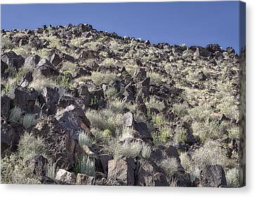 Petroglyphs I - Albuquerque - New Mexico Canvas Print