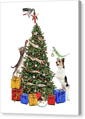 Pets Decorating Christmas Tree Canvas Print