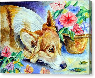 Petunias - Pembroke Welsh Corgi Canvas Print by Lyn Cook