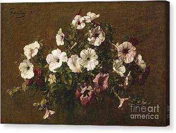 Petunias Canvas Print by Ignace Henri Jean Fantin-Latour