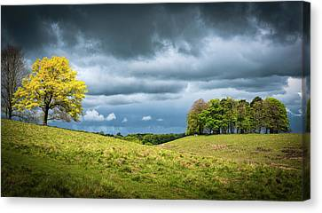 Canvas Print featuring the photograph Petworth Dark And Light by Michael Hope