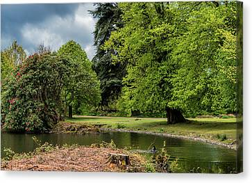 Petworth Lake With Dog Canvas Print by Michael Hope