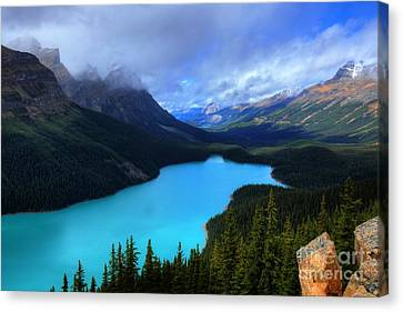 Peyto Lake Banff National Park Majestic Beauty Canvas Print