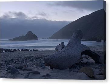 Pfeiffer Beach - Big Sur Canvas Print by Stephen  Vecchiotti