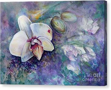 Phalaenopsis Orchid With Hyacinth Background Canvas Print