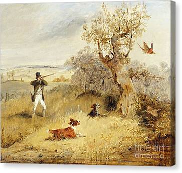 Country Canvas Print - Pheasant Shooting by Henry Thomas Alken