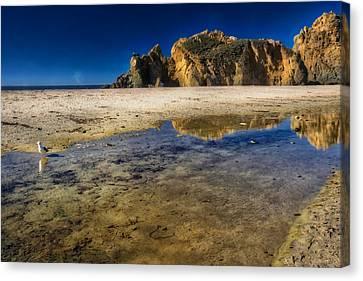 Pheiffer Beach #2 - Big Sur California Canvas Print by Jennifer Rondinelli Reilly - Fine Art Photography