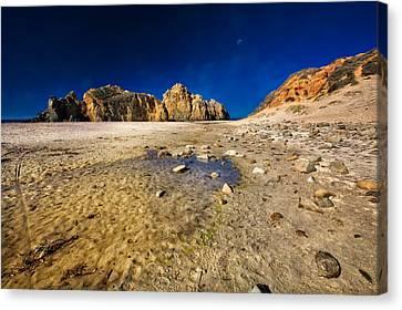 Pheiffer Beach #4 - Big Sur California Canvas Print by Jennifer Rondinelli Reilly - Fine Art Photography