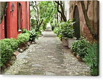 Carolina Canvas Print - Philadelphia Alley Charleston Pathway by Dustin K Ryan
