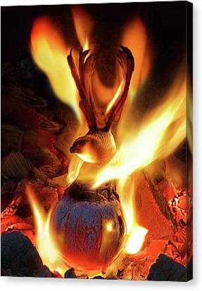 Phoenix Canvas Print by Jerry LoFaro