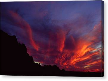 Phoenix Risen Canvas Print by Randy Oberg