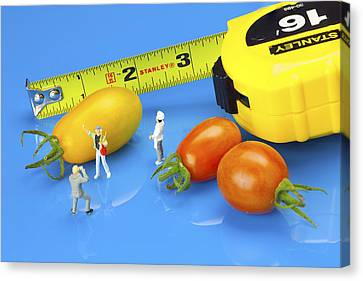 Canvas Print featuring the photograph Photography Of Tomatoes Little People On Food by Paul Ge