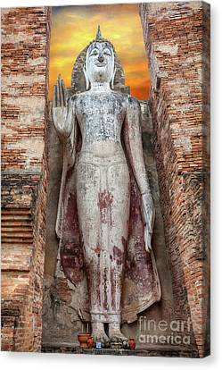 Canvas Print featuring the photograph Phra Attharot Buddha by Adrian Evans