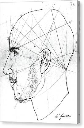 Phrenological Study Canvas Print