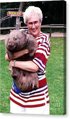 Phyllis Holding Thirty Lb Wombat Australia Canvas Print