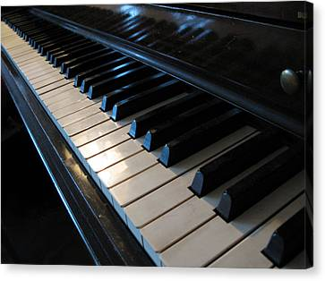 Piano Keys Canvas Print by Anthony Rapp