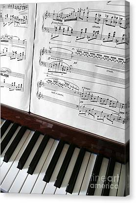 Piano Keys Canvas Print by Carlos Caetano