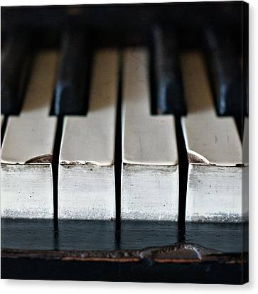 Piano Keys Canvas Print by Julie Rideout