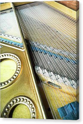 Piano Strings Canvas Print by Tom Gowanlock
