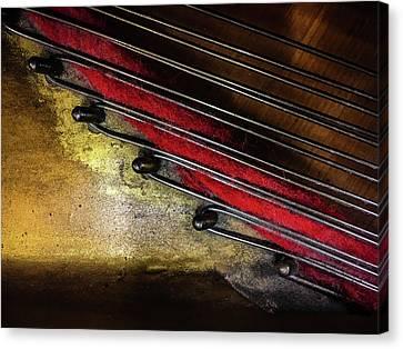 Piano Wire II Canvas Print by Jae Mishra
