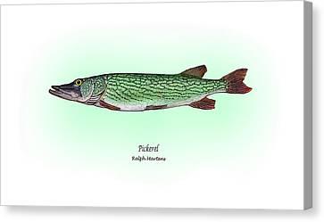Pickerel Canvas Print by Ralph Martens