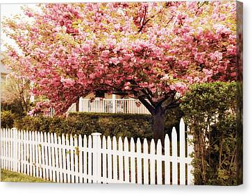 Picket Fence Charm Canvas Print by Jessica Jenney