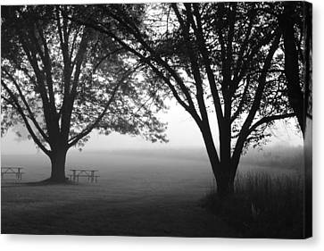 Picnic In The Fog Canvas Print by Lauri Novak