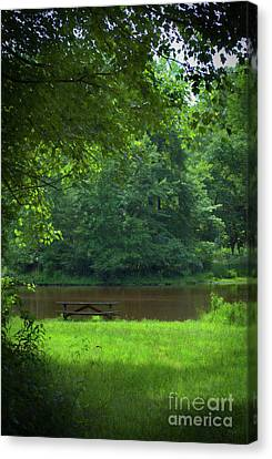 Picnic Perfect Canvas Print by Skip Willits
