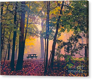 Picnic Table In The Autumn Woods Canvas Print by Robert Gaines