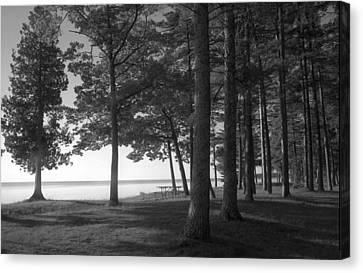 Picnic Table View-newport State Park Canvas Print by Stephen Mack