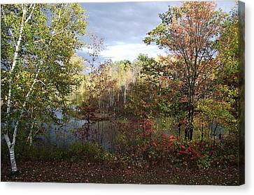Picture Perfect Canvas Print by David and Lynn Keller